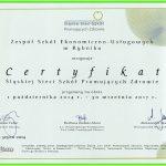 1 certyfikat(1)